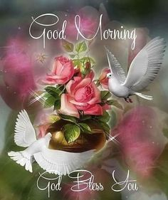 Good morning sister and all. Have a happy day and a great new week. God bless xxx take care and keep safe. Blessed Sunday Quotes, Sunday Prayer, Sunday Morning Quotes, Happy Sunday Morning, Good Morning Sister, Good Night Prayer, Morning Images, Gd Morning, Sunday Images