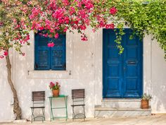 Man Made Door House Santorini Blue Flower Greece Wallpaper Laptop Wallpaper, Wallpaper Backgrounds, Flower Wallpaper, Greece Wallpaper, Fond Design, Fachada Colonial, Greek House, Cobalt Glass, Santorini