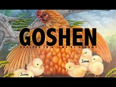 Goshen: Shelter in a time of storms