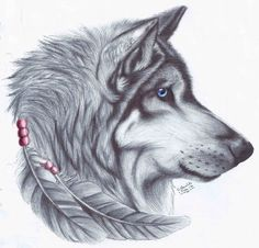 #wolf #feathers