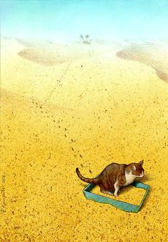 Cat Sandbox Cats are funny creatures