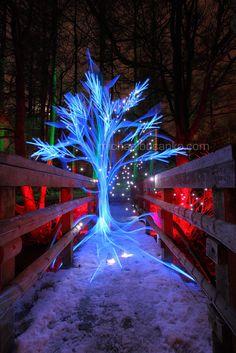Michael Bosanko: Flowing, light drawing, light in the darkeness