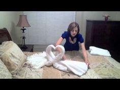 Cisnes de toalha