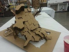 Student cardboard map project
