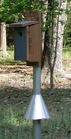 How to Build a Bluebird House. The squirrel baffle is the important part!
