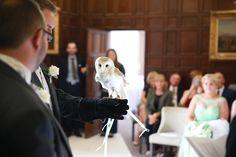 Owl's Weddings, Wedding Dresses, Fashion, Bridal Dresses, Moda, Bridal Gowns, Wedding Gowns, Mariage, Weding Dresses