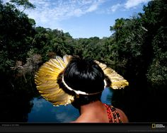 National+Geographic+Amazon   1280 x 1024 pixels—best for larger/widescreen monitors