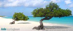 Aruba reisinformatie
