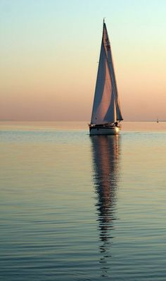 Sailing Calm waters and clear evening sky Boat Art, Boat Painting, Evening Sky, Yacht Boat, Sail Away, Catamaran, Belle Photo, Sailing Ships, Sailing Boat