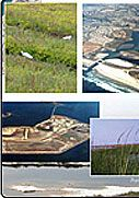 Coastal Engineering   Coastal, Environmental and Water Resources  Moffatt & Nichol   Moffatt & Nichol