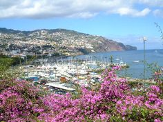 Top 10 best tourist places in Portugal  Funchal, Madeira