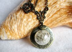 Dandelion seed round photo locket with bronze accents and wish charm.