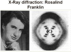 X-Ray diffraction: Rosalind Franklin