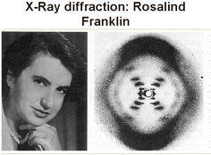 X-Ray diffraction: Rosalind Franklin Science Geek, Science Nature, Historical Women, Biotechnology, Divine Feminine, Genetics, Girl Power, Chemistry, Beast