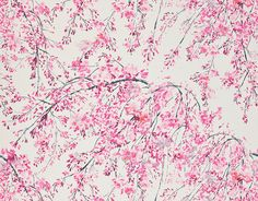 Plum Blossom – Peony fabric from Designers Guild. Delicate trailing plum blossoms, printed in tones from subtle pastel to richer shades Designers Guild, Fabric Design, Pattern Design, Tricia Guild, Chinese Landscape, Pastel, Light Of Life, Fabric Wallpaper, Wallpaper Ideas