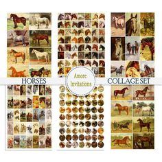 Etsy Crafts, Art Crafts, Vintage Horse, Scrapbook Designs, Collage Sheet, Digital Collage, Etsy Seller, Clip Art
