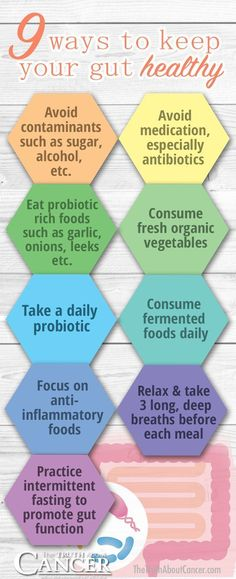 Hypothyroidism Diet - Healthy digestive system comes from having good daily habits. Then you cant miss these 9 tips! Get the Entire Hypothyroidism Revolution System Today Ovarian Cyst Treatment, Cancer Treatment, Leaky Gut Syndrome, Hypothyroidism Diet, Diverticulitis Symptoms, Gestational Hypertension, Pulmonary Hypertension, Probiotic Foods, Blood Pressure Remedies
