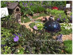 Fairy Clayton is king of the fairy gardens! Thank you Jill Bondi with Midwest Ground Cover for all the great pictures of the 2015 Chicago Flower Show!