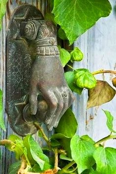 Door knocker. I need to find one for the backyard gate