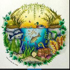 تلوين لرسمه من كتاب #enchantedforestcoloringbook متوفر تسليم فوري