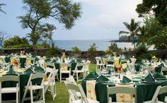 Bayview Lawn Reception