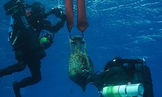 Divers returning to the site of an ancient wreck off the Greek island of Antikythera have found artefacts scattered over a wide area of the steep, rocky sea floor. These include intact pottery, the ship's anchor and some puzzling bronze objects. The team believes that hundreds more items could be buried in the sediment nearby.  Photo: Divers recover an amphora from the site of the Roman Antikythera shipwreck in Greece. Photograph: Hellenic Ephorate of Underwater Antiquities/WHOI