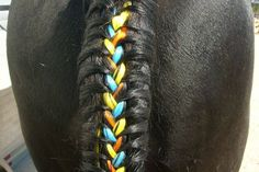 Colored extensions braided into a black tail! Cool!!