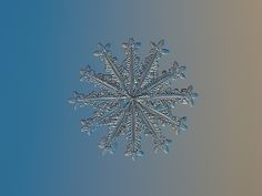 AMAZING real Snowflake macro: Wheel of time | Flickr - Photo Sharing!
