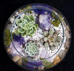 Diy Terrarium Kit, Hanging Terrarium, Air Plant Terrarium, Garden Terrarium, Glass Terrarium, Succulents Garden, Crystal Terrarium Diy, Succulent Care, Succulent Bowls