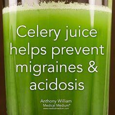 11 Best Celery juice benefits images in 2018 | Celery juice