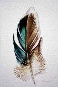 Original Watercolor - Feather Study 176 Mallard feather from Australia - Nightly Study June Feather Drawing, Watercolor Feather, Feather Painting, Feather Art, Watercolor Paintings, Tattoo Feather, Feather Sketch, Watercolour, Tattoo Watercolor
