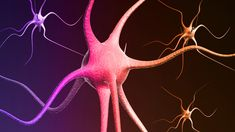 Rheumatoid Arthritis Can Affect Nerves as well as Joints