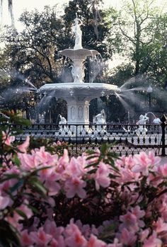 savannah ga images high resolution | Best Places to See While in Savannah
