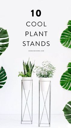 The best plant stands on the market! Looking for ways to embellish your thriving indoor plants? Look no further, the best plant stands on the market will give your greenery some panache Cool Plants, Green Plants, Potted Plants, Indoor Plants, Apartment Plants, Interior Plants, Interior Design, Diy Décoration, Plant Decor