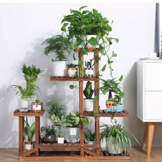 Details about Wooden Plant Flower Stand Shelves Garden Planter Pot Display Rack Holder – apartment.club Details about Wooden Plant Flower Stand Shelves Garden Planter Pot Display Rack Holder Room With Plants, House Plants Decor, Plant Decor, Wooden Plant Stands, Diy Plant Stand, Indoor Plant Stands, Indoor Plant Shelves, Diy Planters, Garden Planters