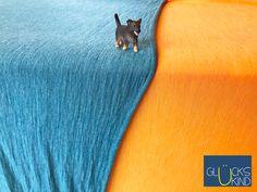 """Hurra ! Endlich der finale Stoff in der Qualität: """" Merinowolle & Tencel Premium+ """"   ** unglaublich weich & anschmiegsam - dieser Stoff ist ein Traum! **  2 wunderschöne Farben: petrol & orange  #baby #mode #kleidung #merino #wolle #bio #tencel #happy #orange #petrol #salzburg #austria #launch #new product #startup"""