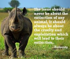 The issue should never be about the extinction of any animal, it should be about the cruelty and exploitation which will lead to their extinction.