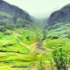 Scotland summer greens. Instagram: @wearehandsome
