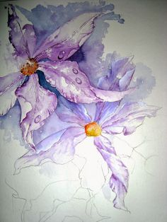 Watercolour Florals: Clematis ('Water' topic)