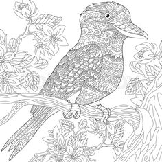 Stock vector of 'Stylized australian kookaburra bird and cherry blossoming tree. Freehand sketch for adult anti stress coloring book page with doodle and zentangle elements.'