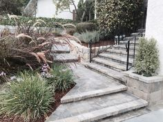 Entryway and step pavers