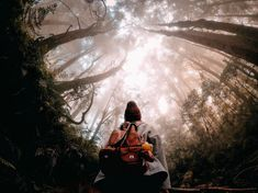 Photo of the day! Take a moment to see the forest through the trees : Michael Chen Action Photography, Boy Photography Poses, Mobile Photography, Travel Photography, Forest Photography, Photography Equipment, Wedding Photography, Cute Poses, Photographs Of People