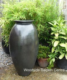 Mesmerizing Tall Square Lined Glazed Black Garden Pots  Woodside Garden  With Interesting Large Tall Matt Black Glazed Roman Jar Vase  Woodside Garden Centre  Pots  To Inspire With Charming Garden Centre Canterbury Also Garden Storage Ideas In Addition Tokyo Palace Gardens And London Garden Fencing As Well As Garden Sun Loungers Sale Additionally Grand Garden From Pinterestcom With   Interesting Tall Square Lined Glazed Black Garden Pots  Woodside Garden  With Charming Large Tall Matt Black Glazed Roman Jar Vase  Woodside Garden Centre  Pots  To Inspire And Mesmerizing Garden Centre Canterbury Also Garden Storage Ideas In Addition Tokyo Palace Gardens From Pinterestcom