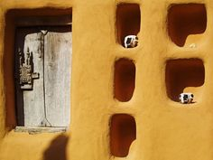 A Dogon house, Mali