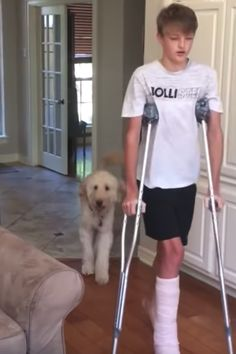 Funny Dog Mocks Human Brother's Broken Leg 'Walk' Behind His Back Silly Dogs, Funny Cats And Dogs, Smiling Dogs, Funny Animal Pictures, Funny Animals, Cute Animals, Bull Mastiff Puppies, Cute Funny Babies, Funny Animal Videos