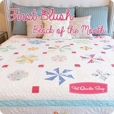 First Blush Block of the Month<BR>Ruby Red Designs for Windham Fabrics Windham Fabrics, Block Of The Month, Fat Quarter Shop, Red Design, Quilt Blocks, Blush, Quilts, Blanket, Pillows