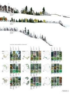 Landscape Arquitecture, Landscape And Urbanism, Landscape Architecture Design, Architecture Graphics, Landscape Plans, Landscape Drawings, Landscape Designs, Architecture Drawings, Cool Landscapes