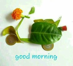 If you want to send good morning love images to your friends and relatives then you have the best good morning images available on our website. Good Morning Saturday Images, Good Morning Love You, Saturday Pictures, Lovely Good Morning Images, Good Morning Happy Sunday, Good Morning Picture, Good Morning Flowers, Good Morning Friends, Good Morning Greetings