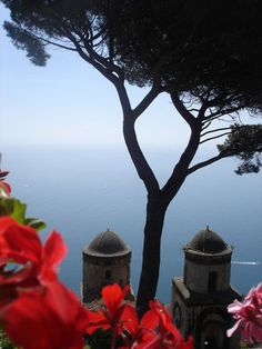 Ravello, Italy. source, the painted bench.