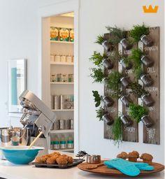 Verse kruiden aan de muur - www.witzand.nl